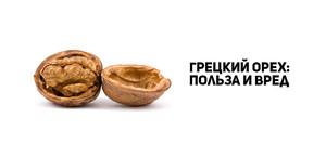 Грецкие орехи лечебные свойства