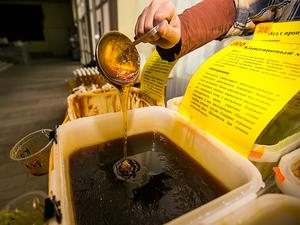 Каштановый мед где собирают