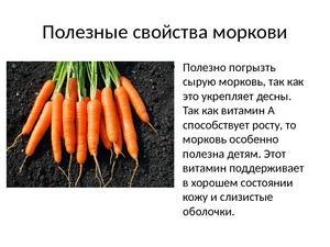 Вред моркови для организма