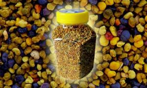 Для того, чтобы сохранить полезные свойства - пыльцу нужно правильно хранить