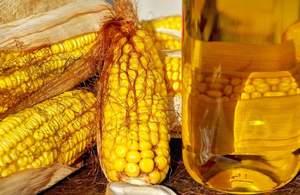 Применение кукурузного масла