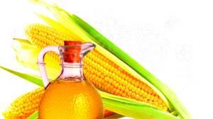 Описание кукурузного масла