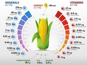 Ценные витамины в кукурузе